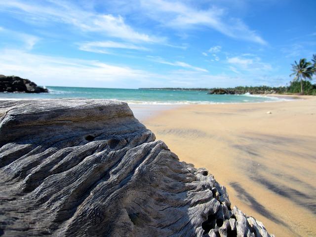 srí lanka beach
